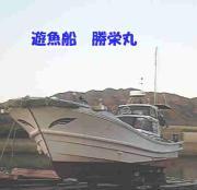 瀬戸内の遊漁船ライフ