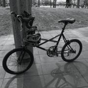珈琲さんと自転車でお散歩。そして〜略〜