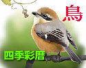 四季彩暦 鳥