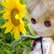 BlackCherry〜ブライス日記〜