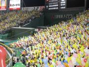 大阪のねーさんのブログ