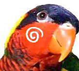 [とりまに☆ブログ]Bird Toy Shop
