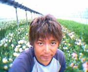 〜菊間に綺麗な花がある場所〜