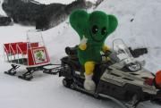 スキーをしましょう