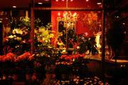 花屋--Dolce vita!--