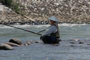 富山の鮎毛鉤釣り(庄川、神通川)