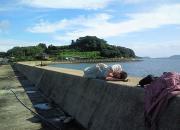 福岡県 じんくちゃんの釣り日記