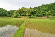 兵庫篠山 農村再生プロジェクト『農援』