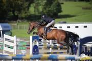 ヨーロッパからの乗馬、馬術トーク