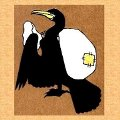 鳥川 某さんのプロフィール
