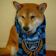 青と黒の軌跡 川崎と共に!