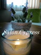 海の近くの隠れ家サロンSalon.Cypress