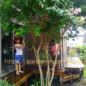 環境に配慮したナチュラルな庭・外構|ガーデンハーモニー(埼玉県)
