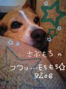 フワッ…もちもち☆BLOG