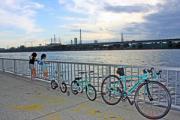三姉妹パパGoroの子育て&自転車Life