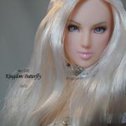 蝶の王国 -Kingdom Butterflly-
