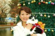 天神猫の会 活動blog