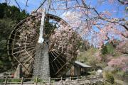 薩摩川内よか景観ブログ