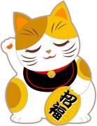 猫豆福耳堂