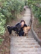 犬とホンコン生活