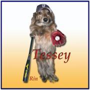 テッシーさんのプロフィール
