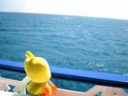 沖縄ダイビング☆Sea placeのランチメニュー