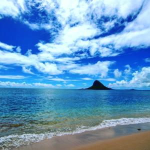 Ninjaのハワイで子育て生活★英語力0の嫁と日本語力0の旦那★