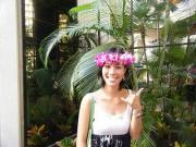 Agasaのハワイ大学日記