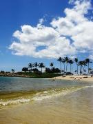 実録!ハワイ親子留学を楽しみたい・るんままハワイ