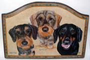 熱帯魚屋の看板犬! ヒューター&アンクルの日記