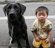 シングルパパの気ままな犬日記