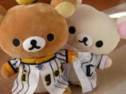 ネコ科専用ブログ 〜せなとトラとライオンと〜