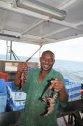 パプアニューギニアの極上天然エビ