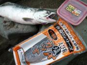 ホウムラの釣り情報サイト HOUMURA Web