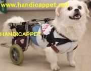 犬の車イス,猫の車イスペット,小動物の車椅子画像