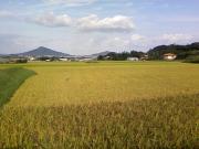 糸島の鉄工所ブログ