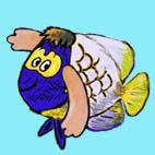 かzの海水魚