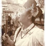 *leaf*:..。o○☆*゚¨゚゚・♪