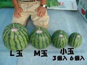 八色産スイカ・魚沼産コシヒカリ 南魚沼市の和田農場