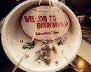 WELCOME TO BRUNWORLD