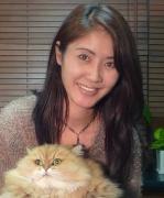 神奈川県議会議員の内田みほこの日記風ブログ