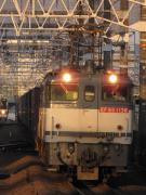 PF1137の鉄道撮影記録