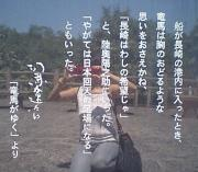 みんと菜園ブログ