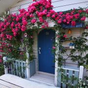 バラ庭・アトリエ・小さな雑貨・ウッドチップスの裏庭