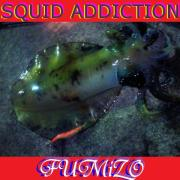 SQUID ADDICTION