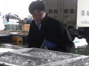 お魚バイヤーまえだの奮闘記