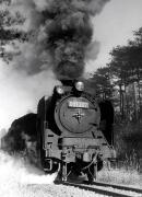 光と風のなかへ & 追憶の鉄路