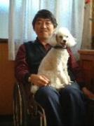 障害者の行政書士と愛犬トトの業務コラム&徒然日記