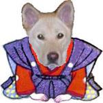 老犬介護の玉葱工房『黒熊犬日記』