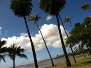 「キレイと健康をハワイよりお届けします〜♪」